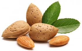 Ill-fated almond heist ends in arrest