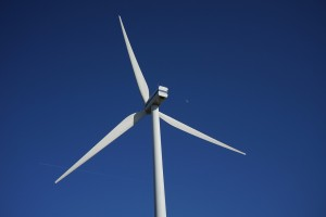 First Large-Scale Wind Turbine Up and Running in Brooklyn