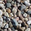 Scavenger Hunt in Bay Ridge Rocks!