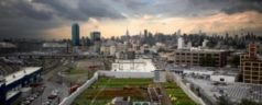 Mayor Bloomberg Tours Brooklyn Grange for First Harvest
